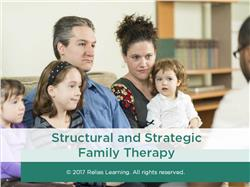 Structural and Strategic Family Therapy